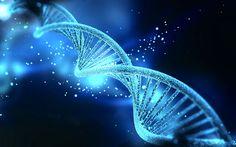 Descoperiri care bulversează știința
