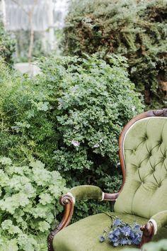 Pantone Greenery, Spring Photos, 2017 Photos, Brand Ambassador, Color Of The Year, Pantone Color, Kingston, Shades Of Green, Dublin