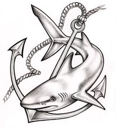 shark tattoo - Google Search