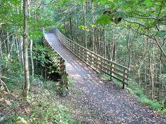 virginia creeper trail. home sweet home.