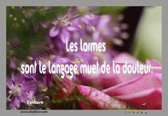 Citation Poème DeuilLes Larmes Sont Le Langage Muet De La Douleur