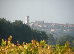 #Torgiano, #Umbria, #Italy