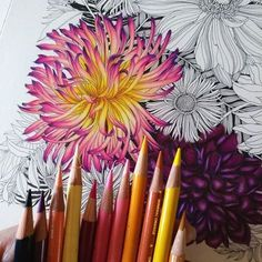 WIP For the pink flower Ive used:  Indigo blue  Dahlia purple  Magenta  Ro  WIP For the pink flower Ive used:  Indigo blue  Dahlia purple  Magenta  Rose  Salmon pink  Blush pink  Cream  Canary Yellow  Sunburst yellow  Golden rod  Mineral orange All colors are from Priscilla García Premier range. Hope this helps! If yes let me know and Ill post more about the colour schemes I use! #adultcoloring  The post WIP For the pink flower Ive used:  Indigo blue  Dahlia purple  Magenta  Ro appeared…