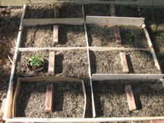 Square foot gardening: no sawing/assembly of frame; newspapers on bottom before filling with dirt for additional weed control; pest-repelling flowers to be planted all around the box, fingers crossed
