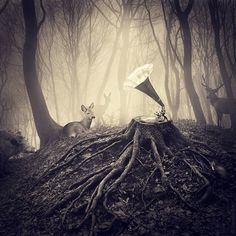 Artist Uses Photo Manipulation to Create Gorgeous Surreal Scenes - Cube Breaker Surreal Photos, Surreal Art, Photographs, Photomontage, Surrealism Photography, Art Photography, Creative Photography, Techno, Painting Prints