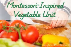 Montessori-Inspired Vegetable Unit (Roundup post with links to printables and activities)