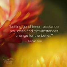 """Letting go of inner resistance, you often find circumstances change for the better."" - Eckhart Tolle Visit the page below to receive free Present Moment Reminders in your email http://bit.ly/EckhartPMR #PresentMomentReminder"