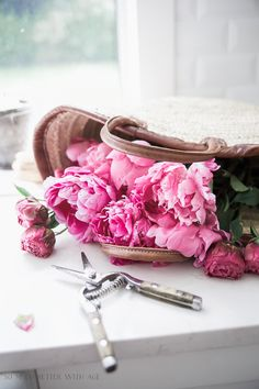Peonies in French ba