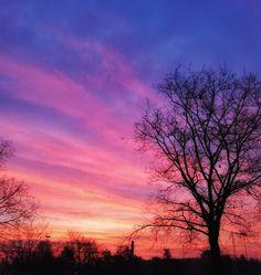 #sunrise #alba #pink #sky #cielo #silhouette #photografy #photo #fotografia
