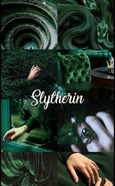 If your thinking that slytherin is evil think about the boy who had no choice Harry Potter Tumblr, Harry James Potter, Harry Potter Anime, Harry Potter Pictures, Harry Potter Art, Harry Potter Universal, Harry Potter Movies, Estilo Harry Potter, Slytherin Harry Potter
