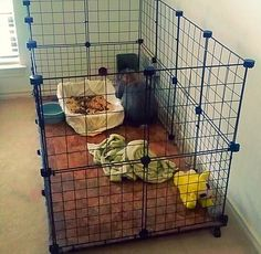 Diy rabbit cage (indoor)