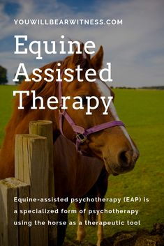 Equine-assisted psychotherapy (EAP) is a specialized form of psychotherapy using the horse as a therapeutic tool. This modality is designed to address self-esteem and personal confidence, communication and interpersonal effectiveness, trust, boundaries an Therapeutic Horseback Riding, Animal Rescue Center, Horse Therapy, Horses And Dogs, Horse Training, Horse Care, Therapy Activities, Confidence, Communication