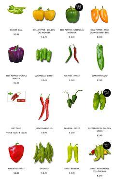 Sweet Pepper Seeds: https://www.sandiaseed.com/collections/sweet-pepper-seeds