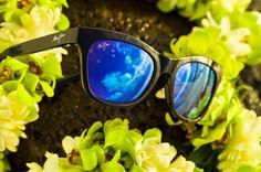 Maui Jim Sunglasses at Aulani, A Disney Resort & Spa