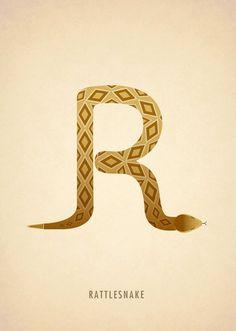 Alfabeto-com-Animais-Marcus-Reed-r