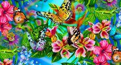 plantas nativas para aves | Cultura Guaraní: Plantas Nativas para atraer Aves y Mariposas