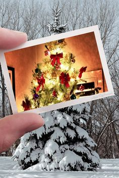 Awesome photo idea!!!! #ChristmasSpirit