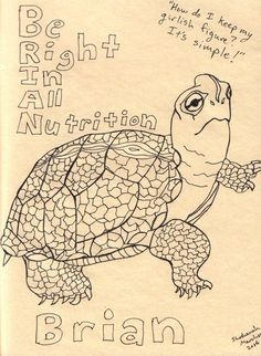 """""""How do I keep my girlish figure?"""" Be Right In All Nutrition says Brian the turtle. Reptiles And Amphibians, Tortoises, Art Drawings, Turtle, Nutrition, Birds, Fish, Illustration, Animals"""