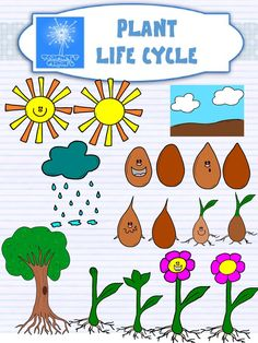 Plant life cycle CLIPART {with and without faces}
