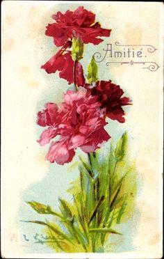 Künstler Ansichtskarte / Postkarte Klein, Catharina, Amitié, Freundschaft, Rote Nelken