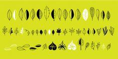 Leaf Doodles™ font download