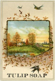 Image from The Graphics Fairy that became part of the cover for Landlocked. The Graphics Fairy is a wonderful source for crafters and designers.
