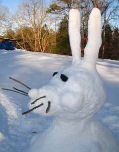 You're snow-bunny til somebody loves you...