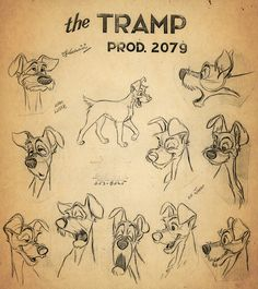 50 Beautiful Pieces Of Concept Art From Classic Disney Movies -- Lady and the Tramp character design Art Disney, Disney Concept Art, Disney Magic, Disney Pixar, Character Model Sheet, Character Modeling, Character Drawing, Character Sketches, Disney Drawings
