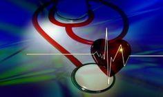 Heart Healthy Fats In The Raw Crunch® Bar | Raw Energy Bars