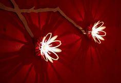 Blossom lighting by Satelight Studios