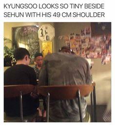 D.O & Sehun // Do Kyungsoo & Oh Sehun || awww