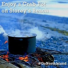 Catch yourself a crab and cook it up right on the beach.  Storey's Beach is located just 10 minutes from Port Hardy, BC and is one of the best kept secrets of Vancouver Island North. www.vancouverislandnorth.ca
