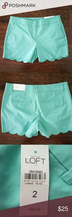 NEW Loft Mint Scallop Shorts Reminds me of the Lilly Pulitzer Callahans with scallop bottom! LOFT Shorts