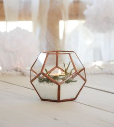 Hey, I found this really awesome Etsy listing at https://www.etsy.com/ca/listing/254350793/small-glass-terrarium-glass-terrarium