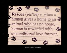 Pet Rescue Art Acrylic Painting Canvas Cream & by TheRescueMama, $21.99