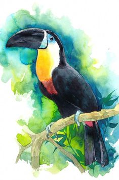 Are You Trying To Locate Watercolor Arts Ideas ? Check Out Our Blog And Also See Our New Watercolor Art Gallery. #WatercolorartIdeas Watercolor Art Paintings, Watercolor Projects, Watercolor Ideas, Watercolor Bird, Watercolor Drawing, Watercolor Animals, Watercolor Techniques, Watercolor Illustration, Art Techniques