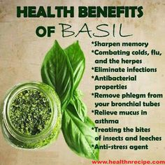 Foods Health benefits of Basil. I had no idea. I plan to eat more, I could use some extra boost.Health benefits of Basil. I had no idea. I plan to eat more, I could use some extra boost. Natural Health Remedies, Natural Cures, Herbal Remedies, Natural Healing, Holistic Remedies, Natural Medicine, Herbal Medicine, Health And Nutrition, Health And Wellness