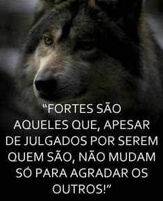 Imagens com frases lindas para suas redes sociais Motivational Phrases, Good Vibes, Love Quotes, Wisdom, Thoughts, Humor, Feelings, Sayings, Words
