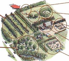 "Explore our site for additional details on ""greenhouse ideas layout"". It is an outstanding location to get more information. Forest Resources, Landscape Design, Garden Design, Farm Layout, Farm Plans, Homestead Farm, Future Farms, Permaculture Design, Mini Farm"