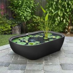 Garden365 Water Garden for Deck, Patio, or Balcony  by Eserro