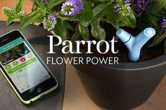 Concours | Ayez la main verte grâce au Parrot Flower Power !