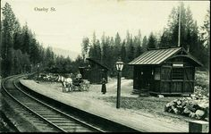 """Akershus fylke Nittedal kommune Hakadal ONEBY St. (på bygning """"Aaneby""""). Sjeldent kort med hestekjerre på perrongen utg N.J.Uds. Postgått 1909 Norway, Train, Zug, Strollers"""