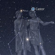 It turns out that Pollux and Castor are 2 stars that are in the Gemini constellation. Dionysus's sons are named after the twin stars.