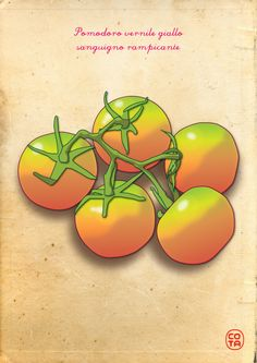 pomodori gialli, ortaggi, illustrazione, arte digitale - Yellow tomatoes, vegetables, illustration, digital art