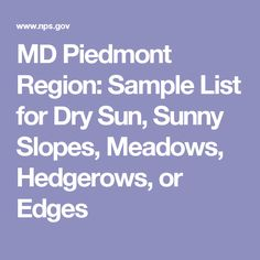 Md Piedmont Region Sample List Of Evergreens  Native Plants For