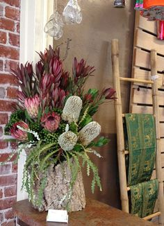 Leucadendron: Safari Sunset Large-scale floral arrangement for event. Proteas, Banksia, Brunia, Safari Sunset and Rainbow leucadendron. Made in a Cork Oak hollowed-out log. Flwers and foliage from Resendiz Brothers Protea Arm in Fallbrook, CA.