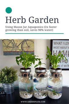 nice 3 Mason Jar Aquaponics Kit - Organic, Sustainable, Fish Hydroponics Herb Garden (WITHOUT JARS)