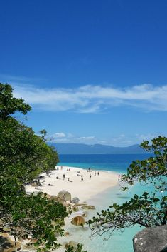 Situated in Queensland, the beautiful Fitzroy Island is just a boat trip from Cairns. Find out more about day-tripping to Fitzroy from Cairns. Brisbane, Perth, Melbourne, Sydney, Australia Tourism, Australia Beach, Queensland Australia, Western Australia, Cairns Queensland