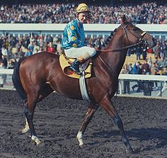 Northern Dancer- 1964 Derby and Preakness winner. He didn't win the Triple Crown, but went on to become one of thoroughbred racings greatest sires.