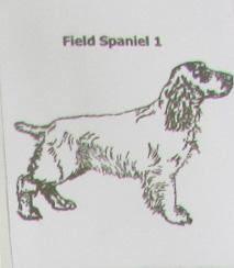 Custom Field Spaniel Dog Natural Stone Coasters Trivits